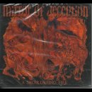 MIRROR OF DECEPTION- A Smouldering Fire LIM. 2CD SET...